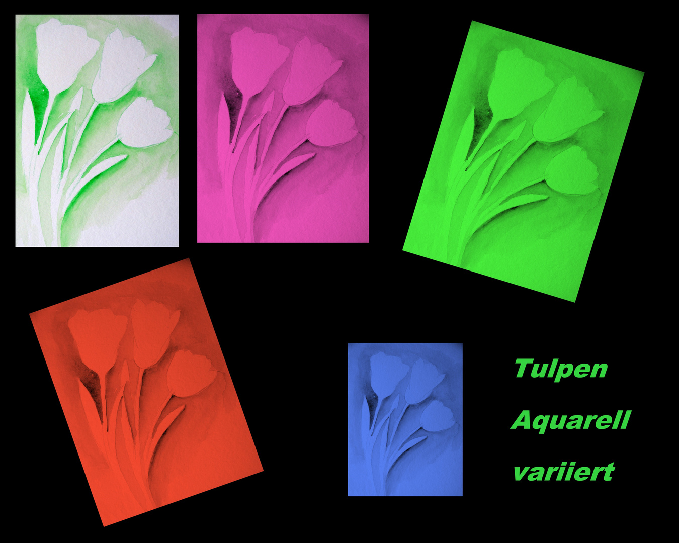 Tulpen Spielerei