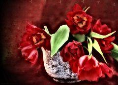 Tulpenschale
