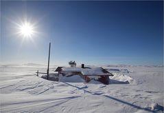 Tundra-Fin-Lapland