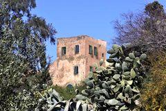 Tunis und Umgebung 5