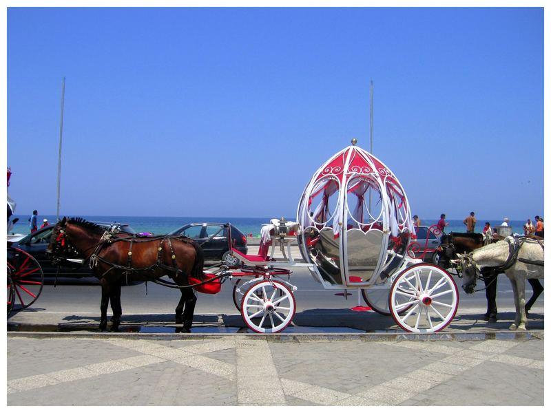 Tunisian taxi
