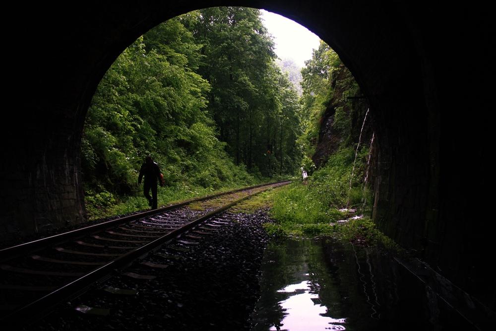 Tunnel am Dornbusch