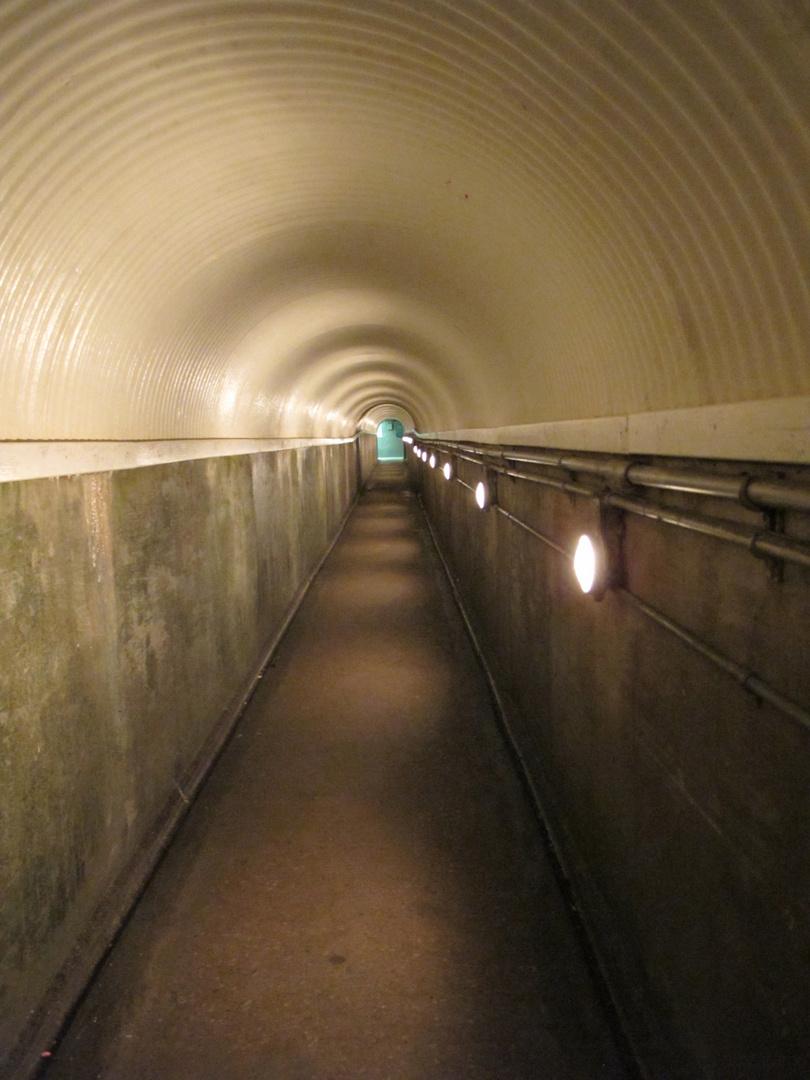 "Tunnel zu den ""Niagara River Rapids"""