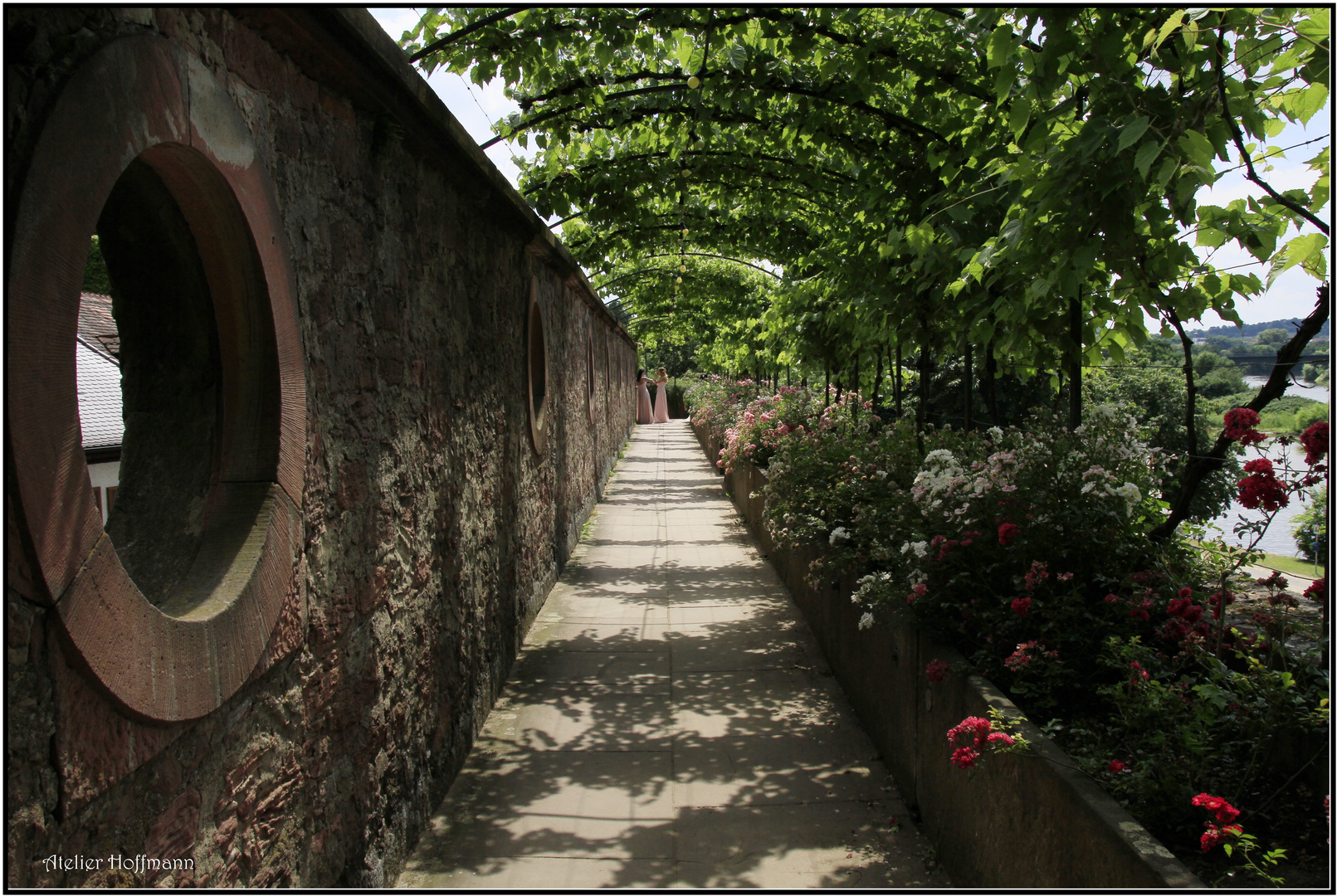 Tunnel....Blick