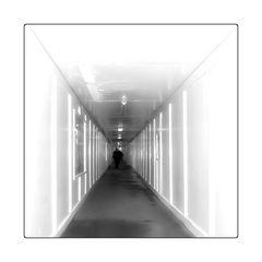 - Tunnelblick -