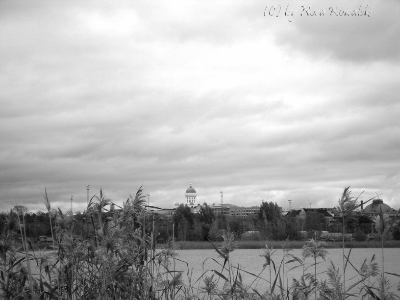 Tuomiokirkko in Landschaft gebettet