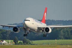 Turkish Cargo A 310