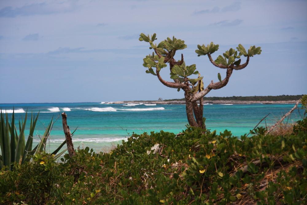 Turks&Caicos northwest point