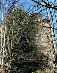 Turm der Burgruine Sayn