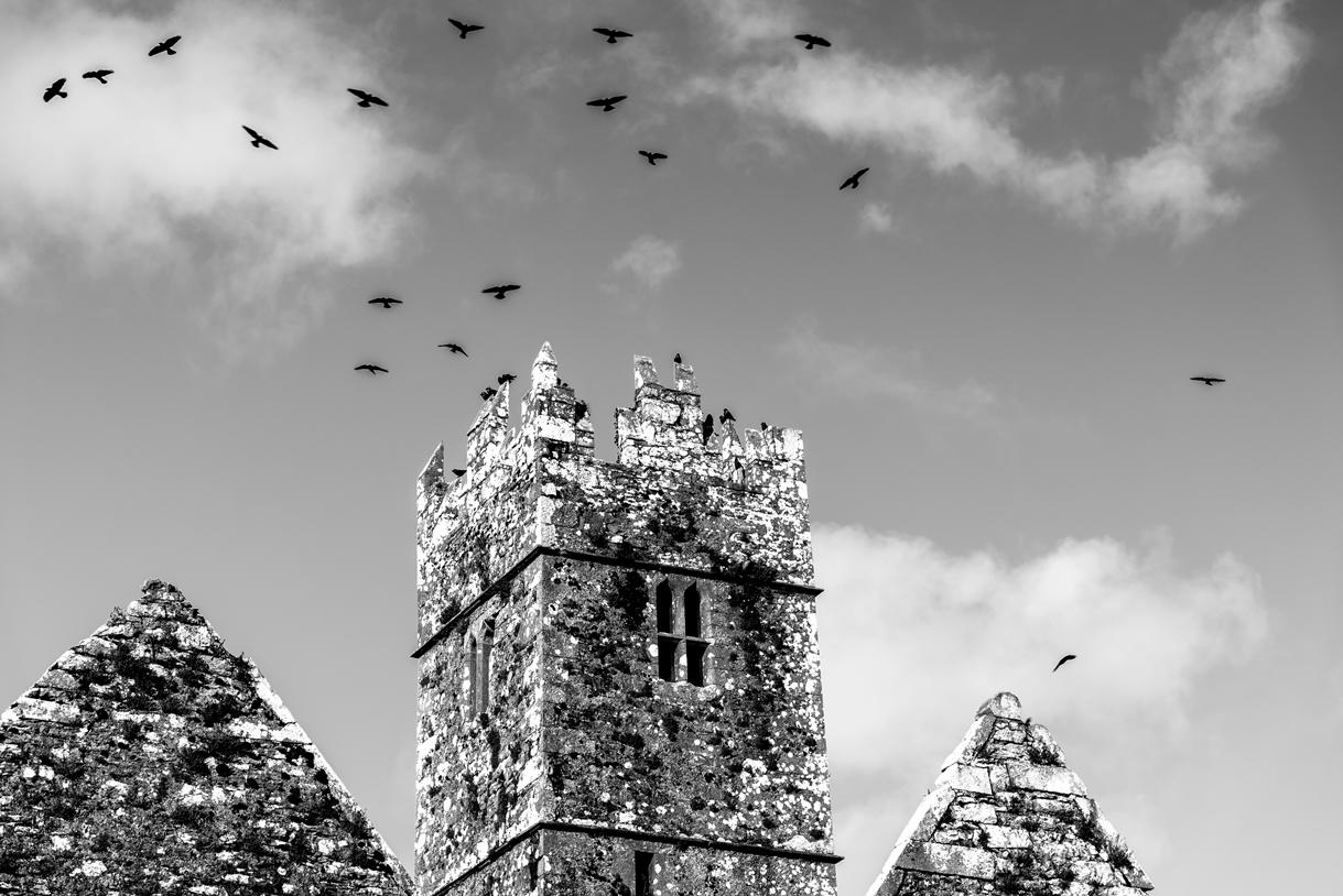 Turm der Raben und Krähen