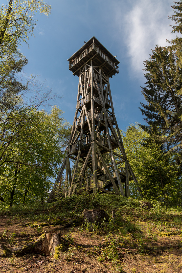 Turm in der Hahnheide