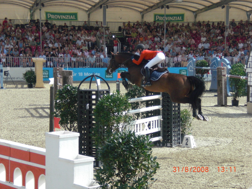 Turnier der Sieger 2008