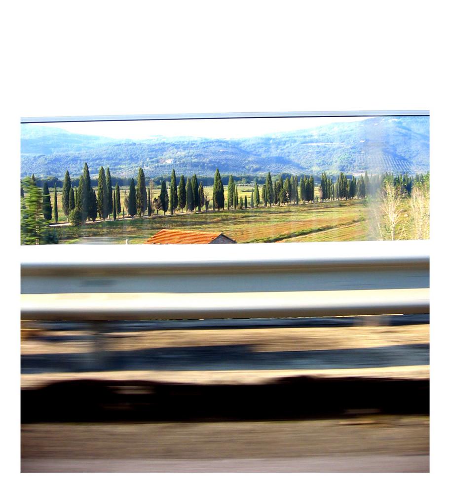 Tuscan Whishes #1