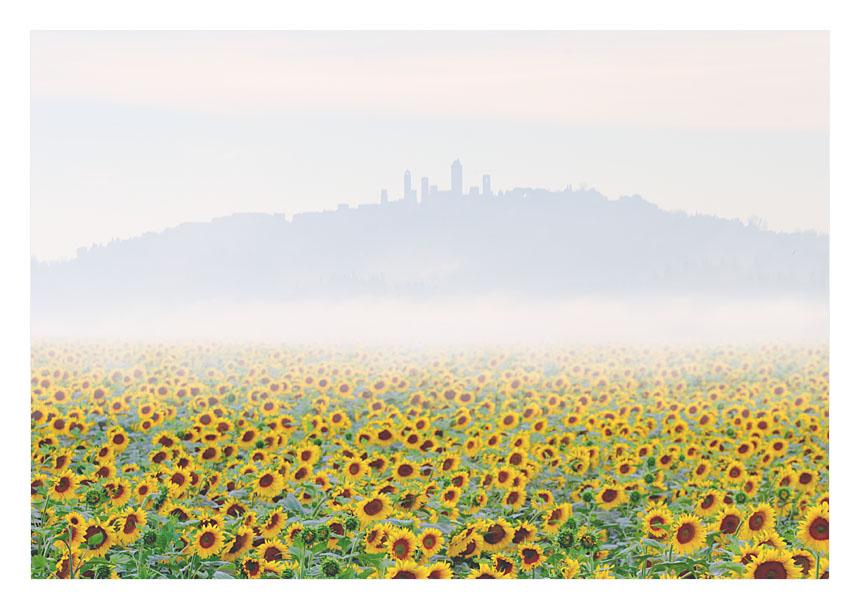 Tuscany dream #1