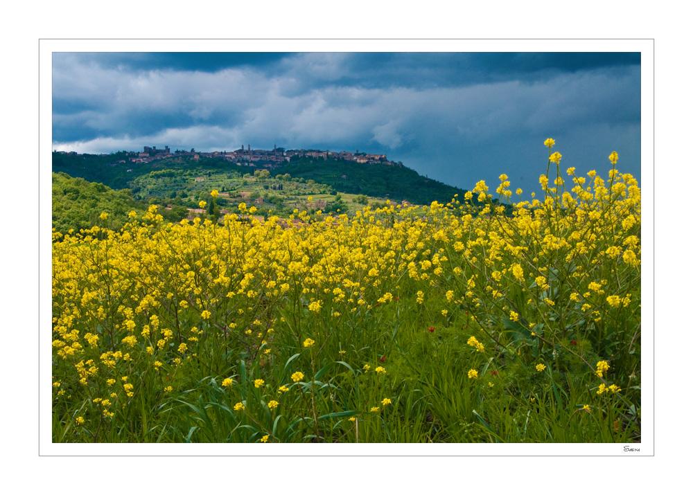 Tuscany X