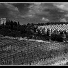 Tuscany XI