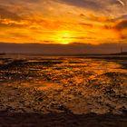 Tweed Estuary Sunrise