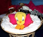 Tweety and friends are watching you