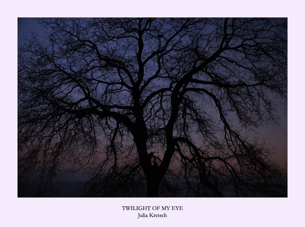 Twilight of My Eye