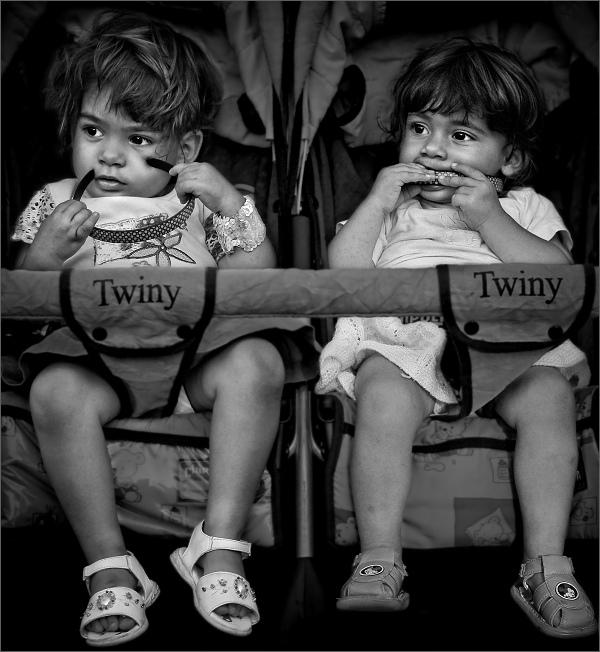 - Twiny -