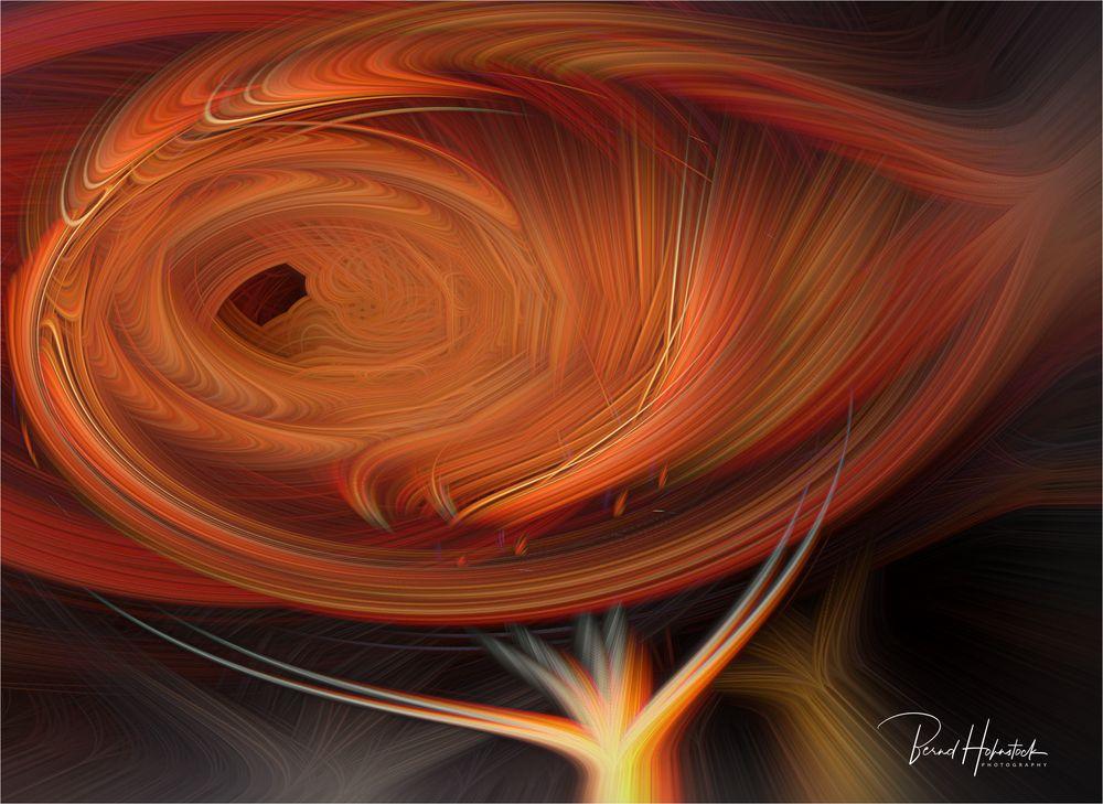 Twirl ...