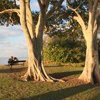 Two at an Australian sunset