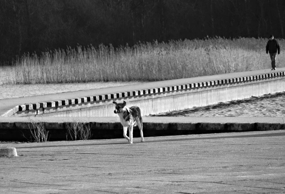 Two on a walk through the lake
