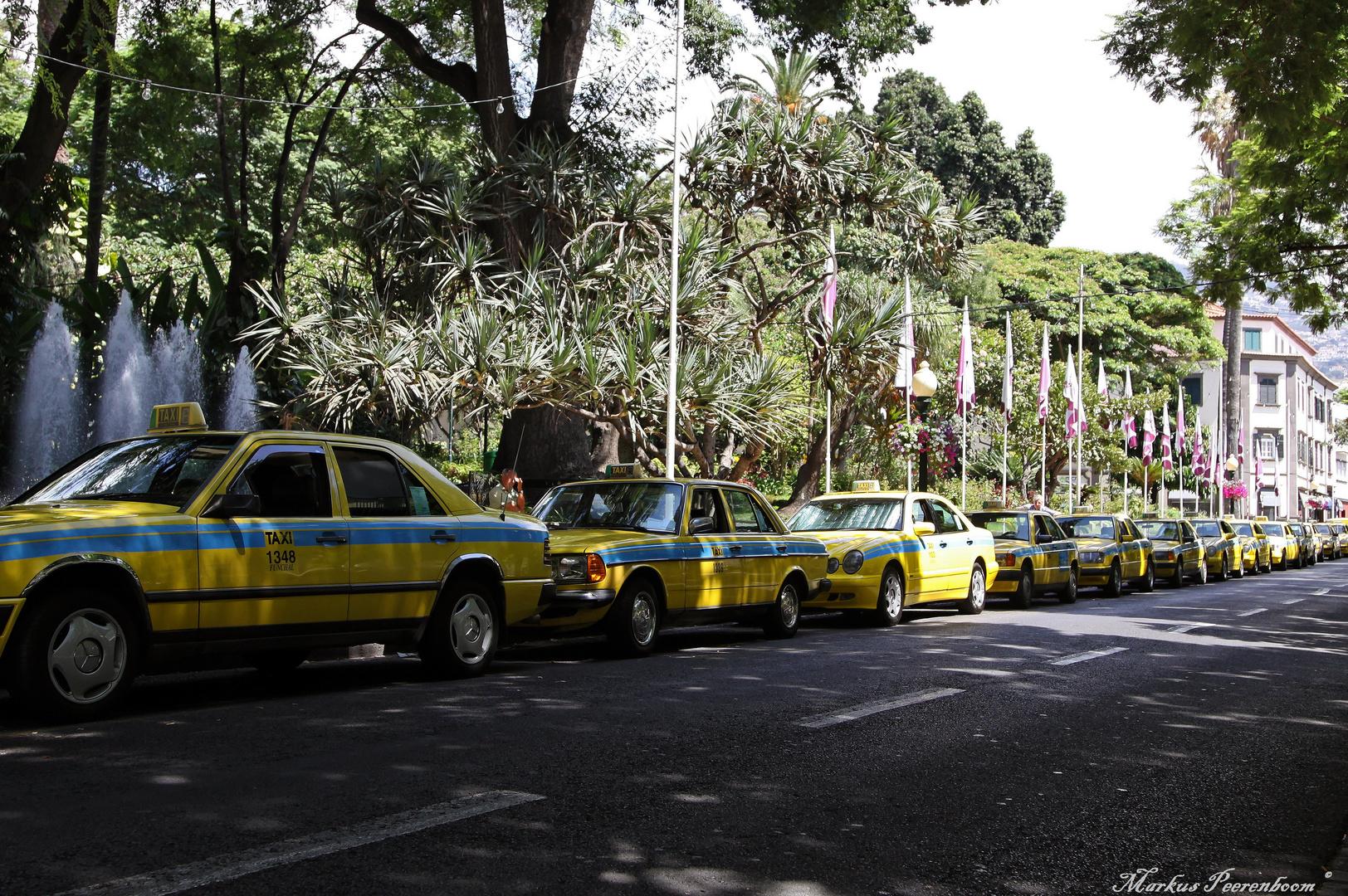 Typisch Madeira