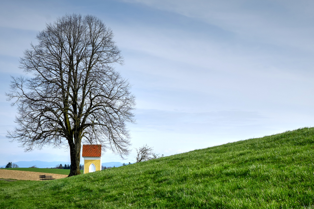 Typisch Mostviertler Landschaft