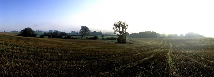 Uckermark - Morgenstimmung am Potzlower See