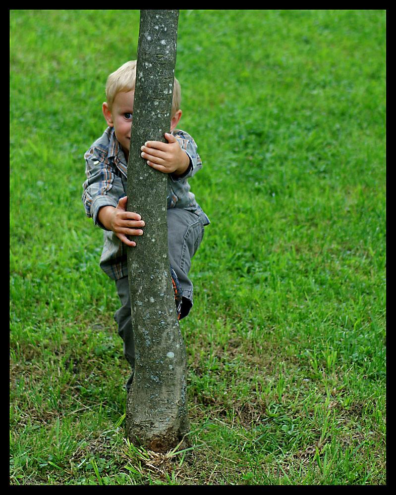 Üben für den Maibaum