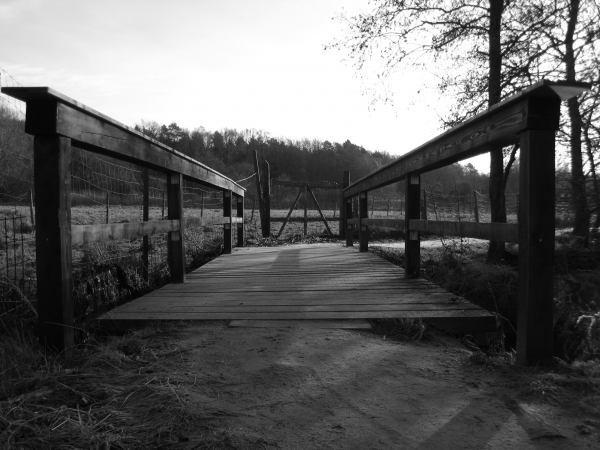 Über Brücken muss Jeder mal gehen
