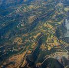 ... über Chinas Reisterrassen ...