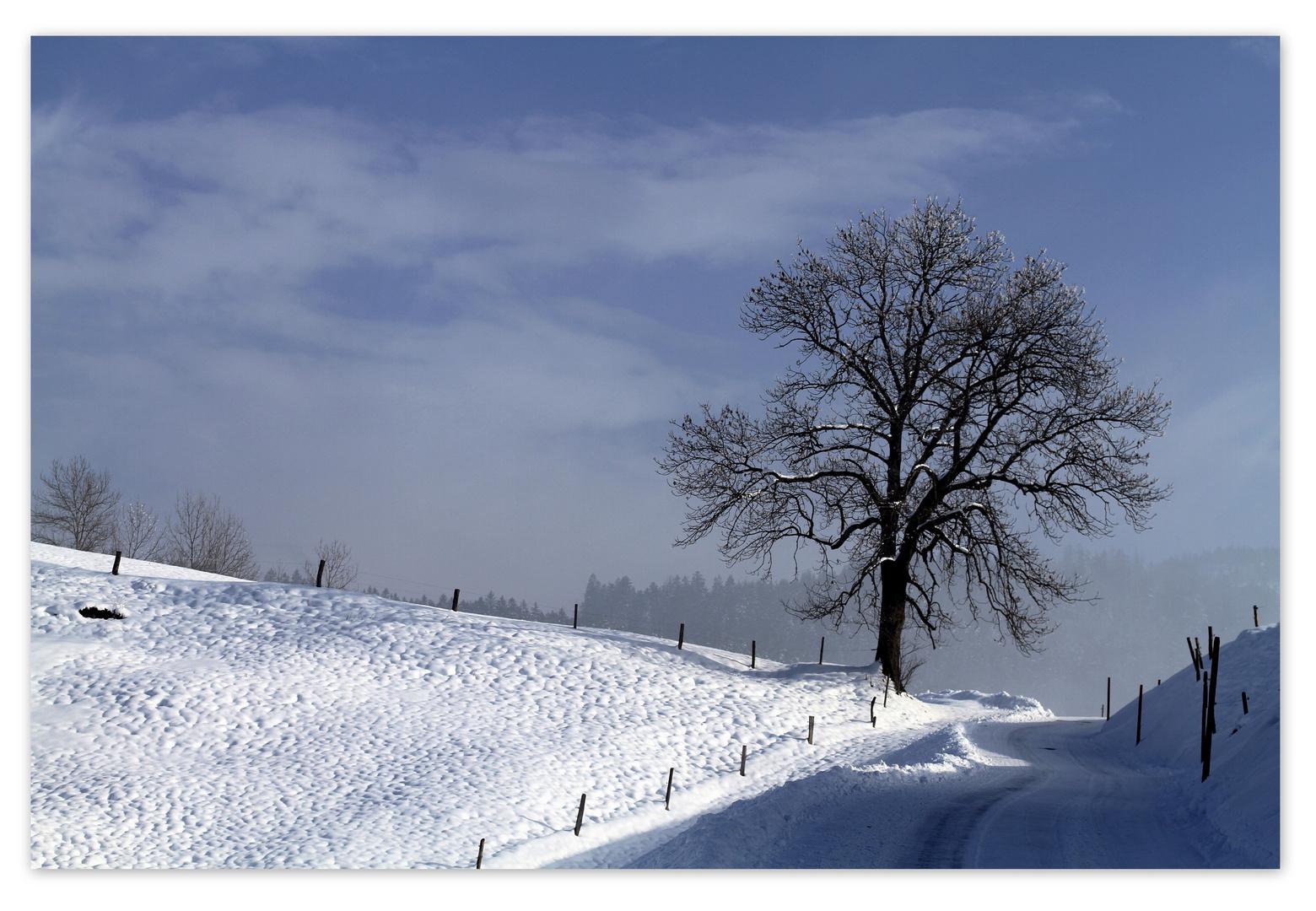 Ueber dem Nebel.....