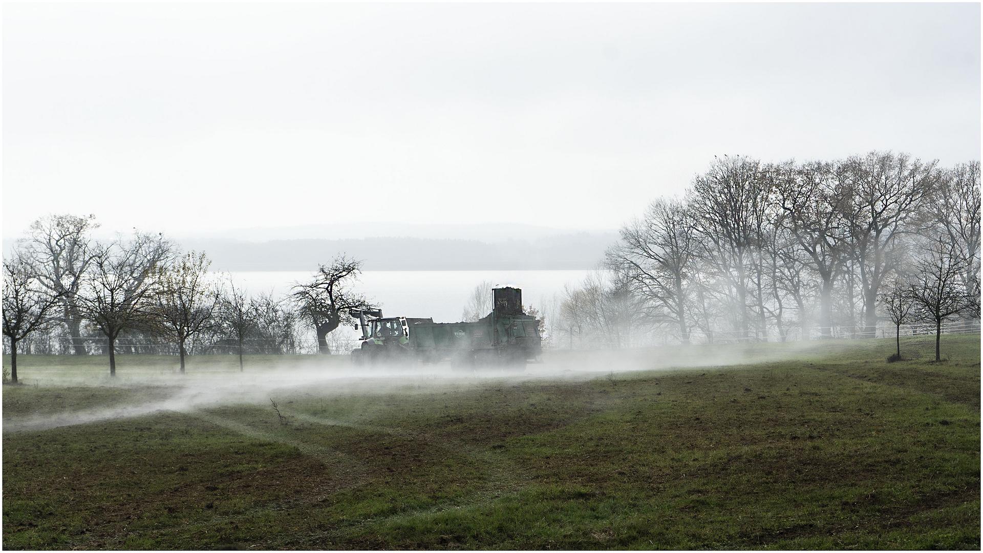 Über dem Rothsee - das etwas andere Nebelbild