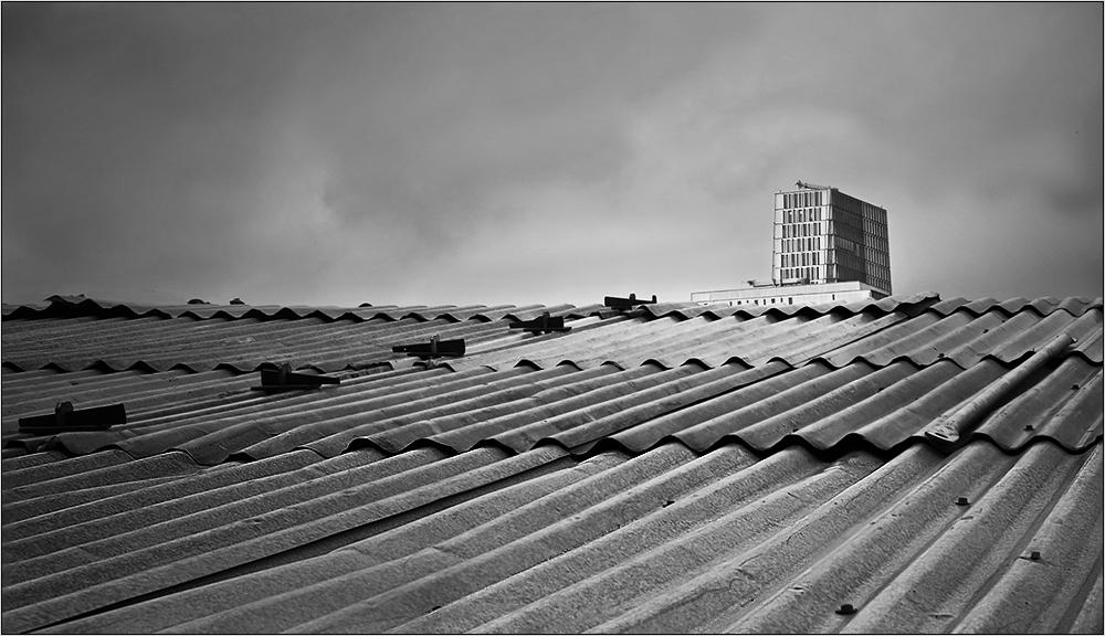 ...über den Dächern ...