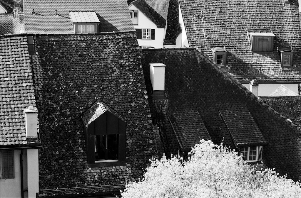 über den Dächern von Rapperswil