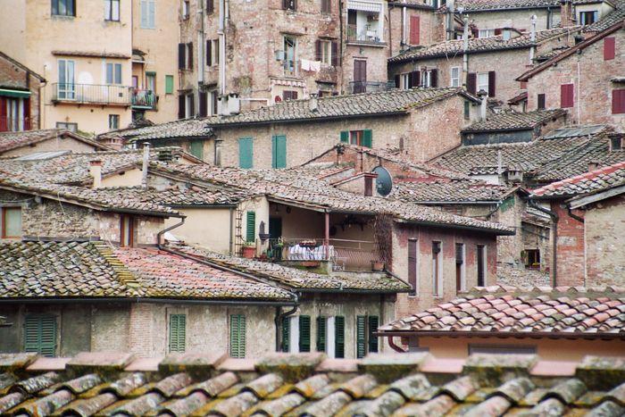 über den Dächern von Siena-1