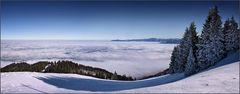 ~ Über den weißen Wolken auf weißem Grund II ~