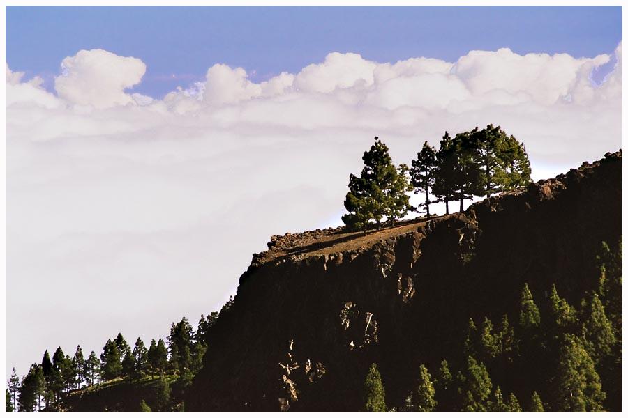 ....über den Wolken #2