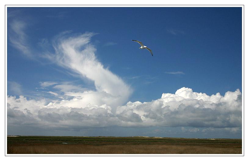 Über den Wolken....
