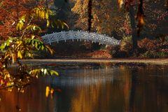 Über diese Brücke wollt ich gehn...
