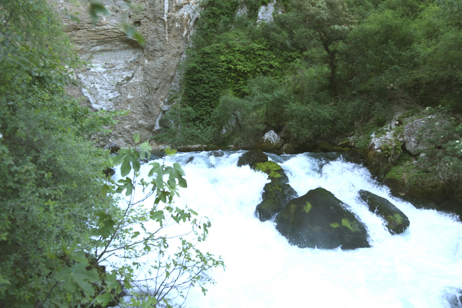 Ueberlauf der Sorgue Quelle (Fontaine de Vaucluse)