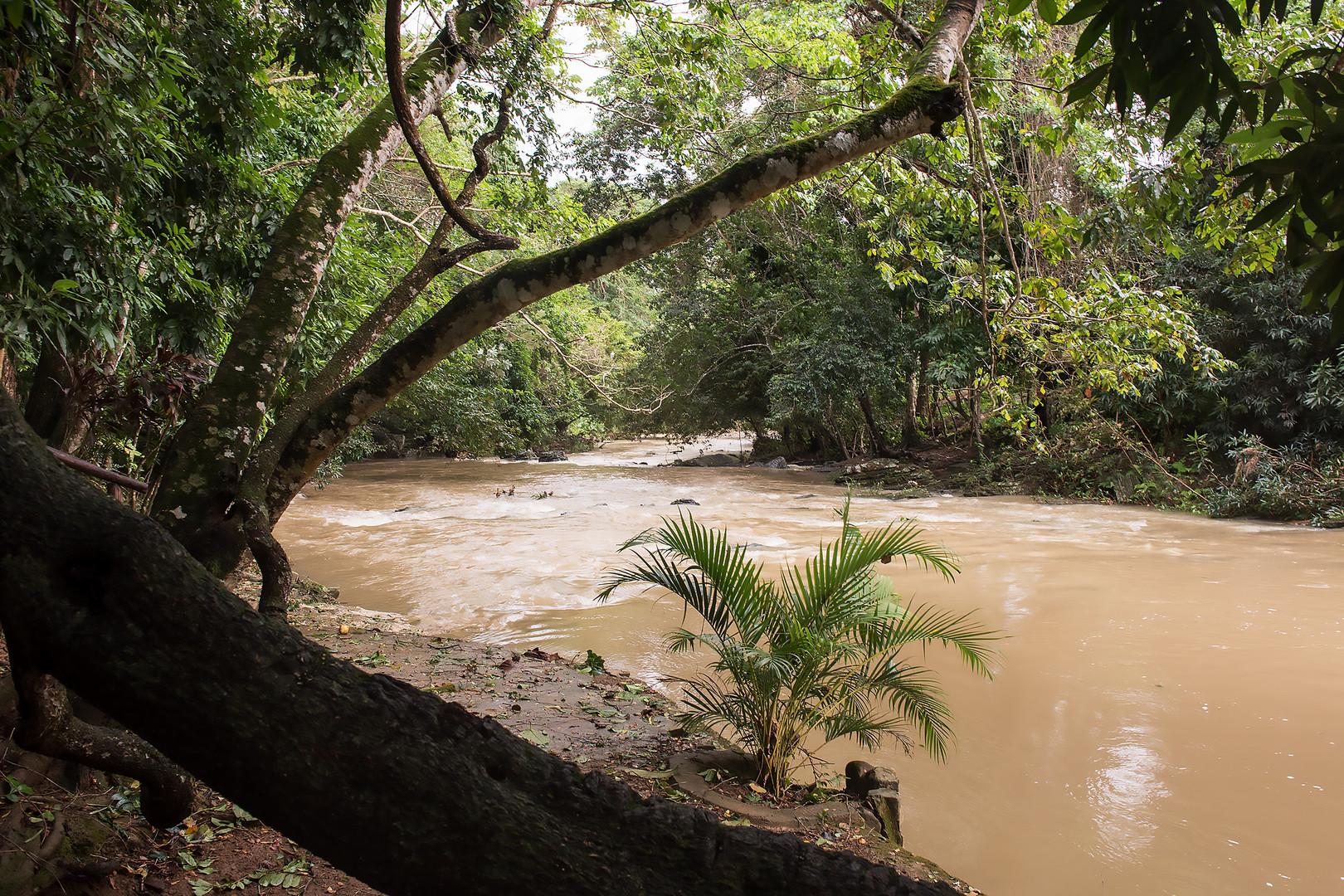 Überschwemmter Fluss