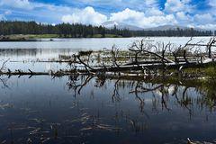Überschwemmung                        DSC_3663