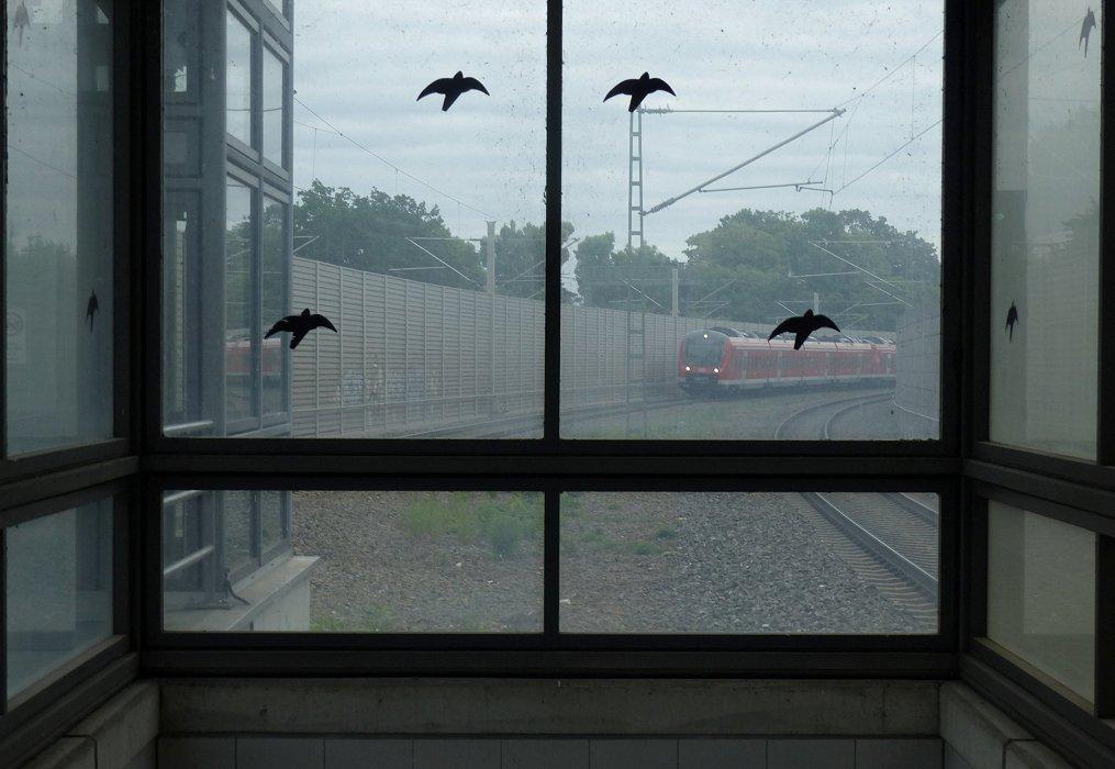 Überspiegelt [Bahnraum Augsburg]