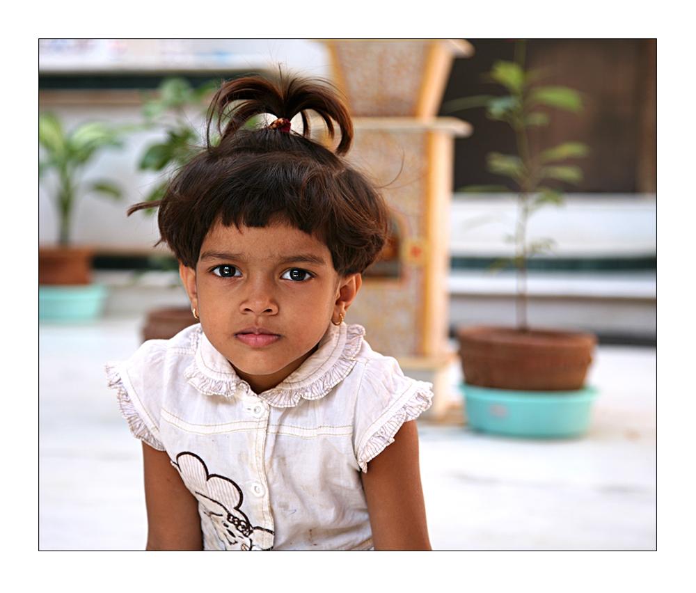Ubrigens Man Tragt Wieder Palme Foto Bild Asia India South
