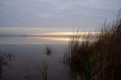 Ufer am Steinhudermeer