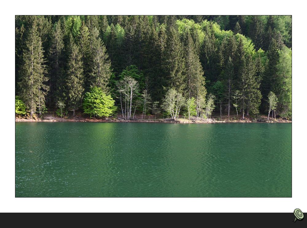 * Ufer *