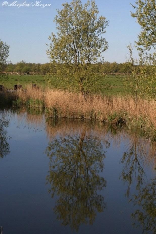 Ufer-Spiegelung